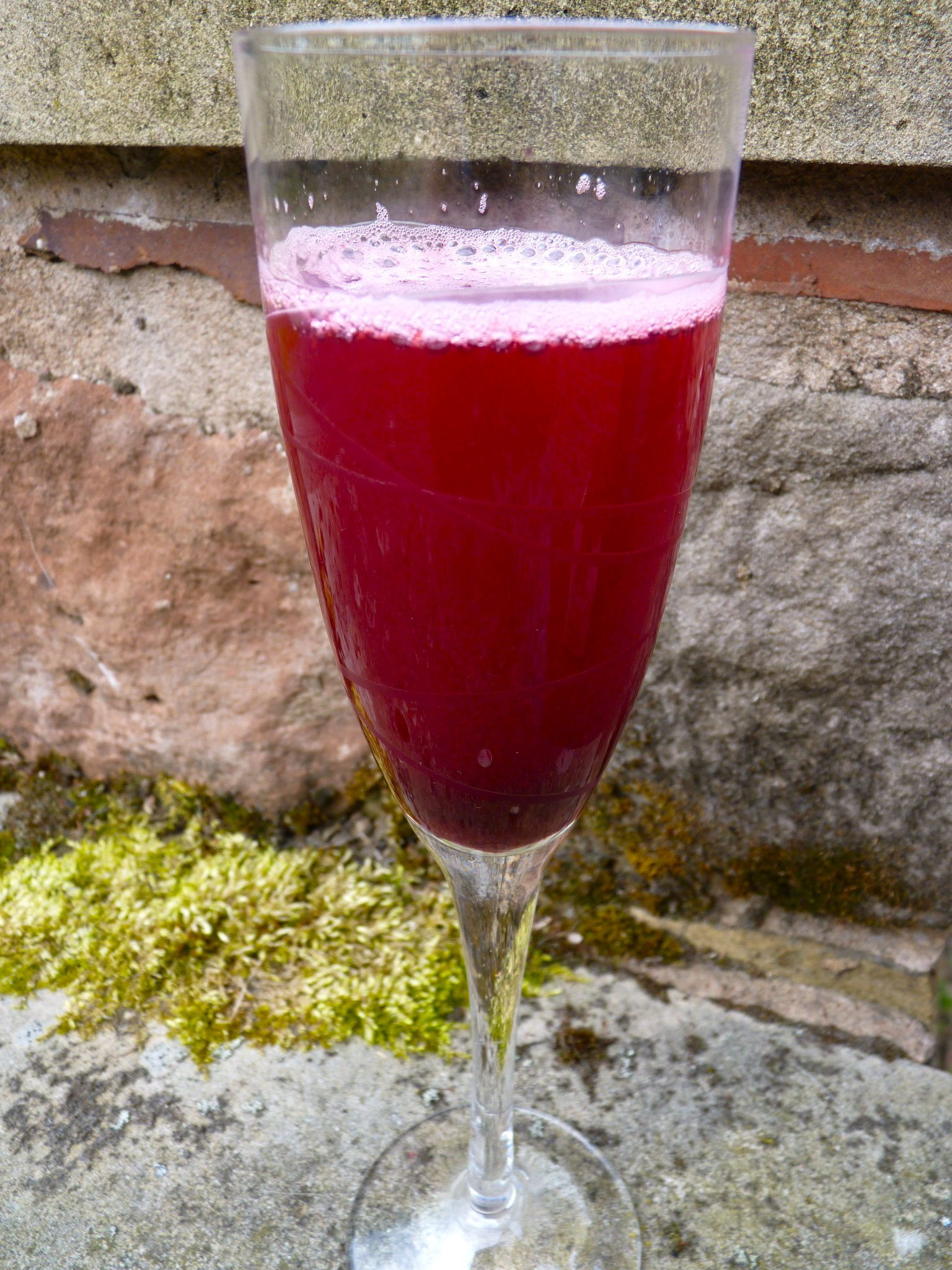 Blackcurrant cordial   The Ordinary Cook