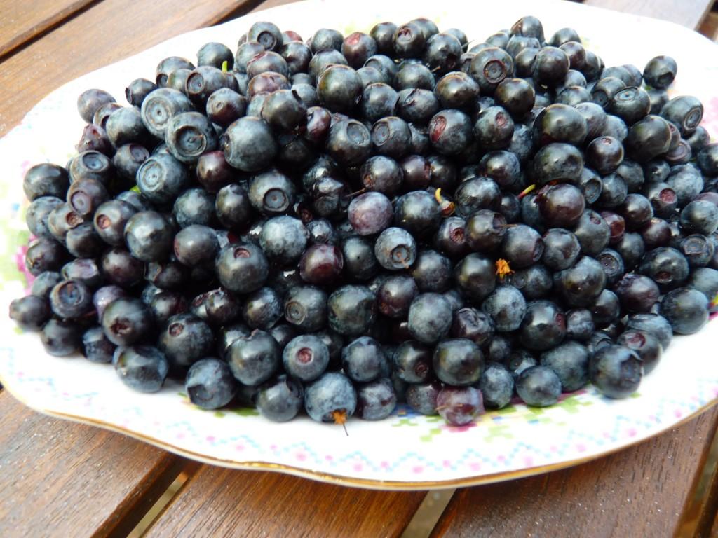 winberries