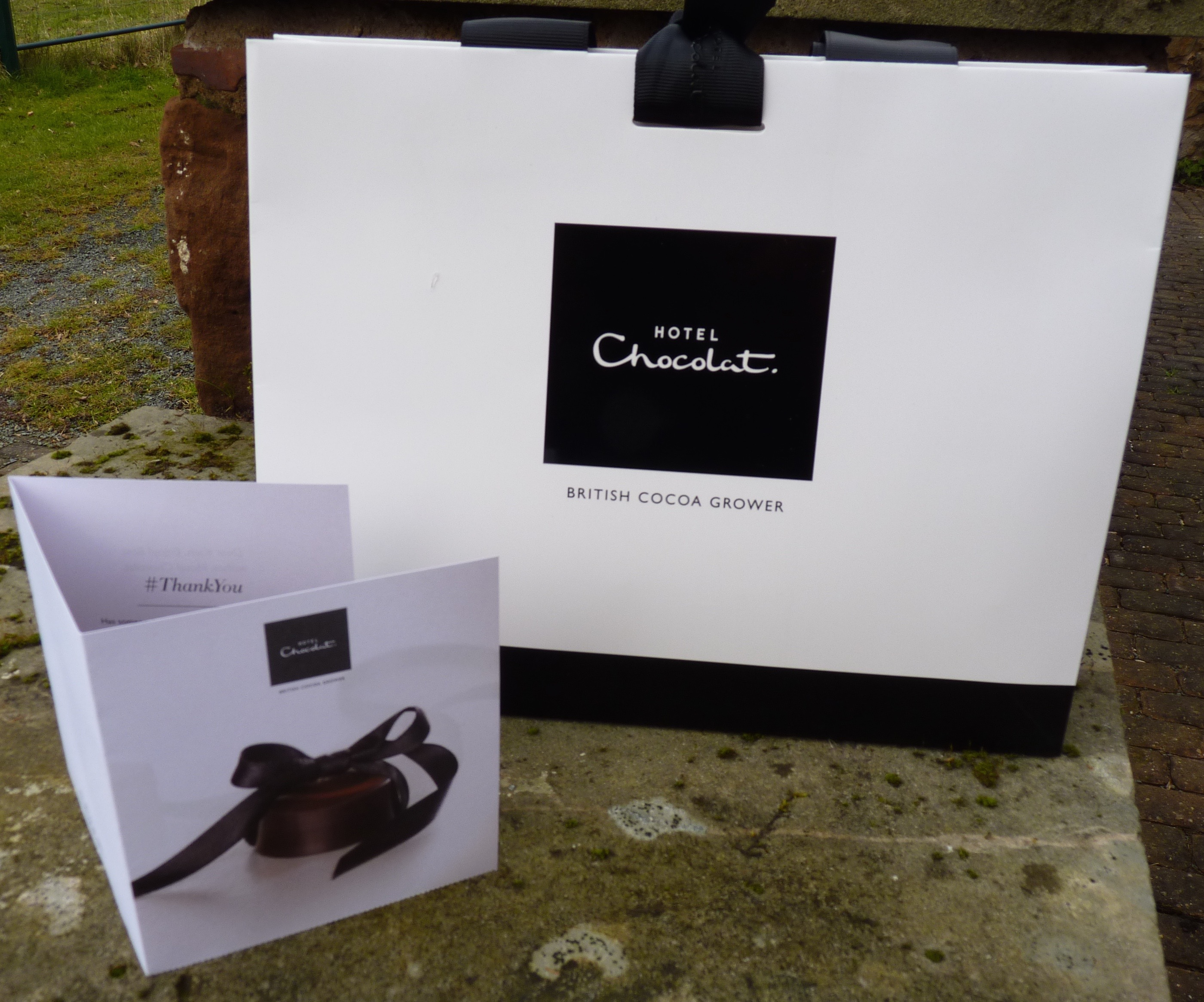 Review the ordinary cook hotel chocolat gift bag negle